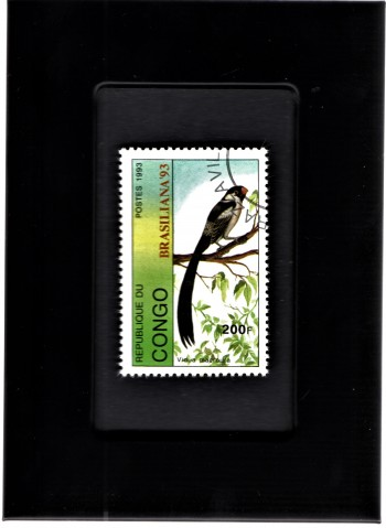 Image for Tchotchke Framed Stamp Art Collectable Postage Stamp- Pgymy Sunbird