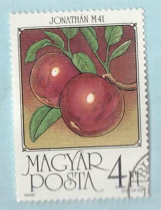 Image for Hungary Postage Stamp Fruits-Apples
