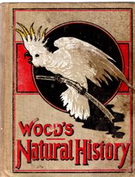 Image for Wood's Natural History