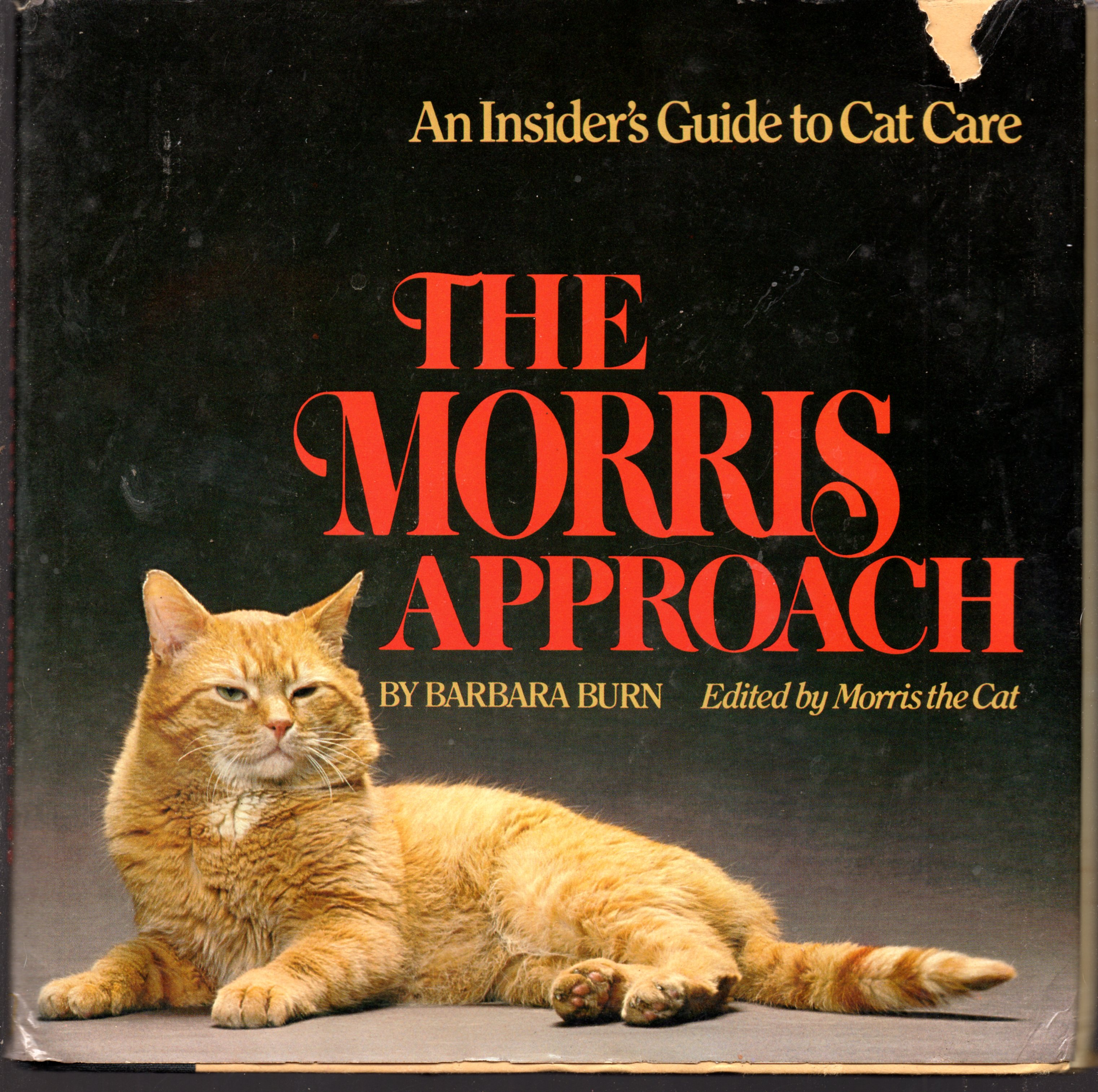 Image for The Morris Approach